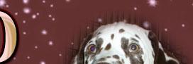 Вишдаймонд - питомник далматинов
